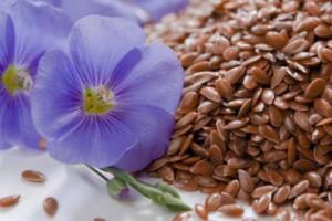 Семена льна: польза для здоровья и красоты