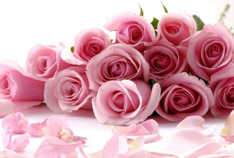 цветочного этикета