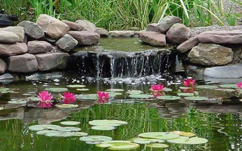 пруд в загородном доме